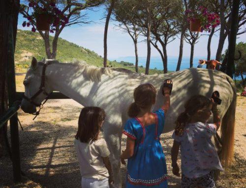 Visit Elba, blog tour di un weekend alla scoperta delle bellezze e delle iniziative che l'isola offre.